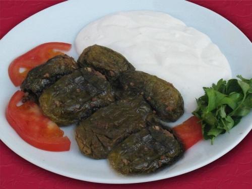yaren_500X-ŞEYH-EL MAHŞİ